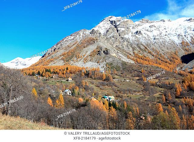 Haute Vallée du Var, Parc National du Mercantour, Alpes-Maritimes, Provence-Alpes-Côte d'Azur, France