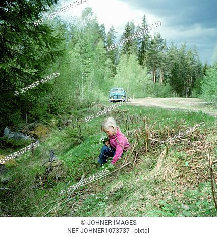 Girl picking flowers on roadside, car in background