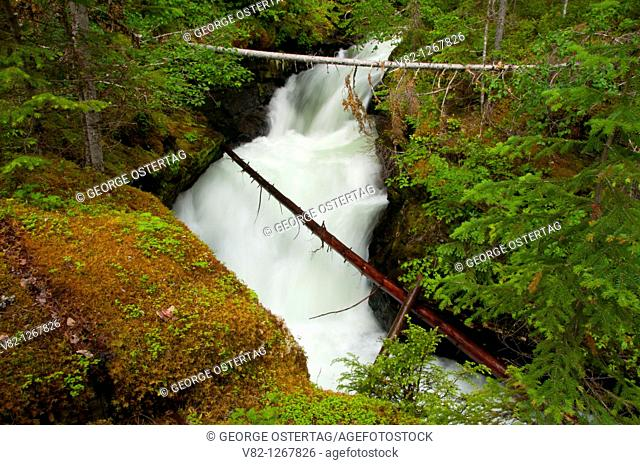 Falls Creek above Sticta Falls, Wells Gray Provincial Park, British Columbia, Canada