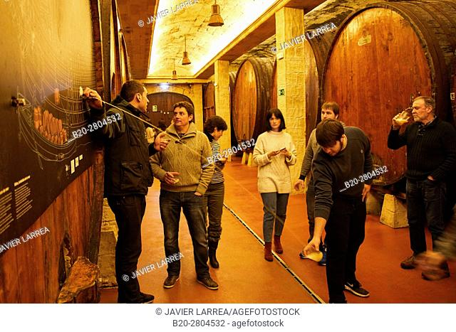 Cider barrels, Sidreria Petritegi, Astigarraga, Gipuzkoa, Basque Country, Spain, Europe