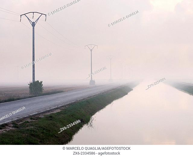 Foggy afternoon at the irrigation channel. Ebro River Delta Natural Park, Tarragona province, Catalonia, Spain