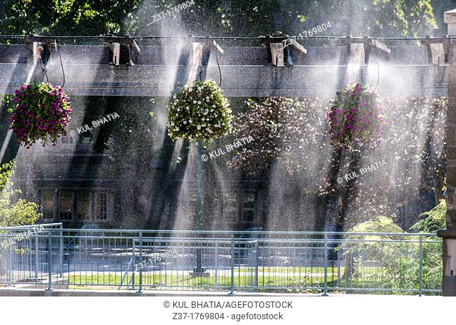 Sunlight streams through floral baskets hanging from an arbor on a patio, Ontario, Canada  A sprinkler system creates a surreal back-lit effect as water spray...