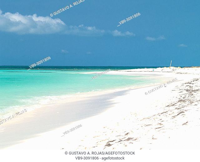 Tropical beach of island Cayo de Agua, Los Roques, Venezuela