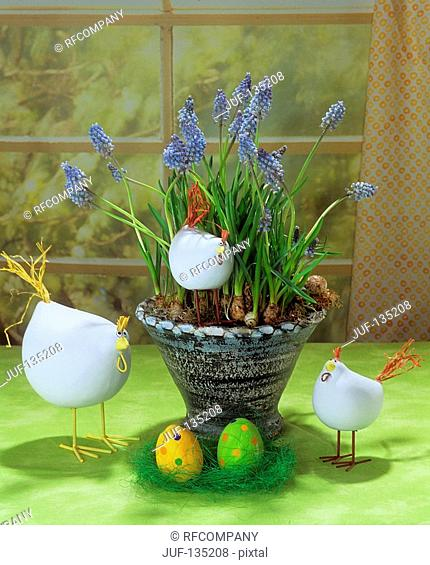 bowl with grape hyacinth