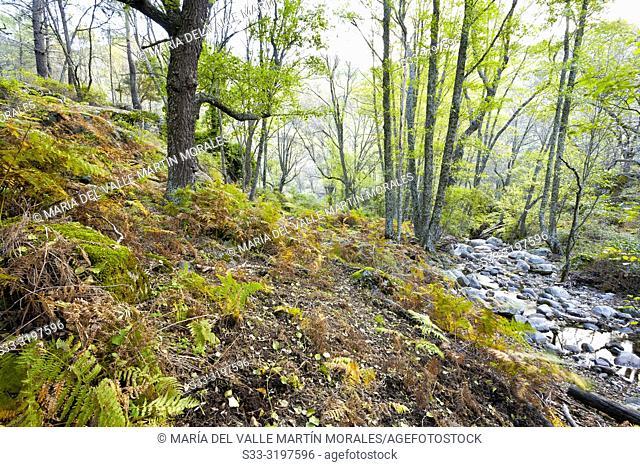 Dry fall at Iruelas Valley. Avila. Spain