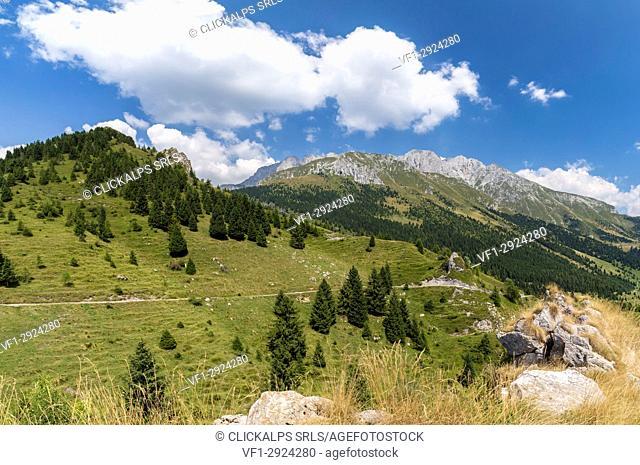 Trail to the Baita Cornetto, under the Presolana mountain, Castione della Presolana, Val Seriana, Bergamo district, Lombardy, Italy