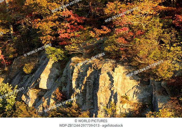 Brevard North Carolina near Asheville Fall Colors Blue Ridge Highway cliffs