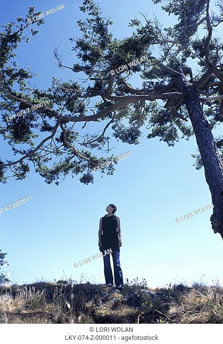 Woman looking up at tree