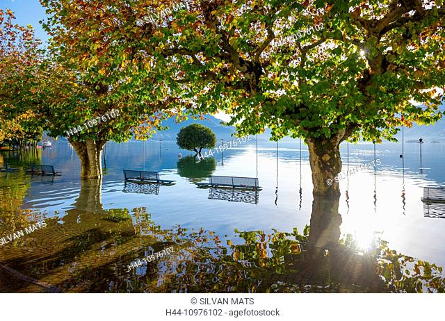 Flooding, Maggiore with trees and benches in a sunny day in Ascona, Switzerland