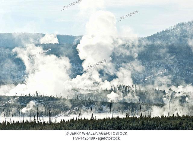 Norris Geyser Basin, Winter, Yellowstone NP, WY