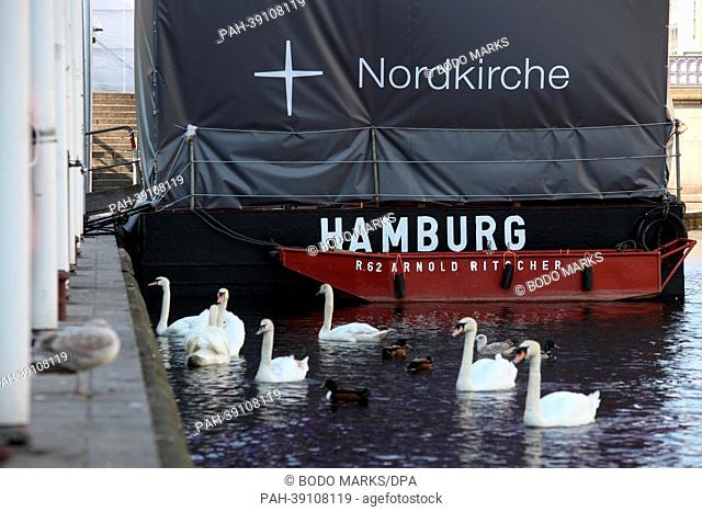 Swans swim near the so-called North Church Ship, which lies at the interior Alster lake at the town hall square in Hamburg, Germany, 29April 2013