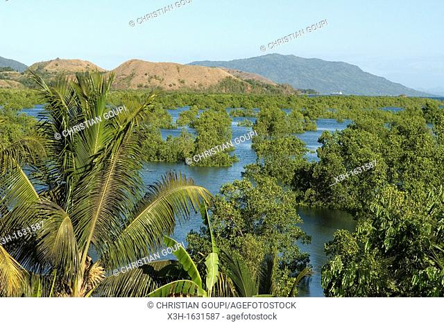 Mangrove around Hell-ville Andoany, Nosy Be island, Republic of Madagascar, Indian Ocean