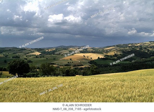 Panoramic view of a landscape, Duesanti, Todi, Umbria, Italy