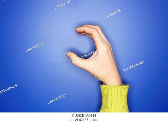Woman's hand doing sign language