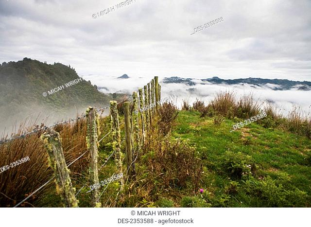 View from the tops of the hills over the morning fog at Blue Duck lodge in the Whanganui National park; Whakahoro, New Zealand