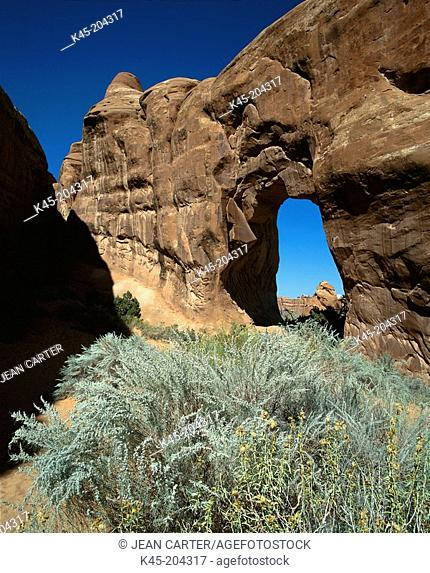 Pine Tree Arch. Devil's Garden. Arches National Park. Utah. USA
