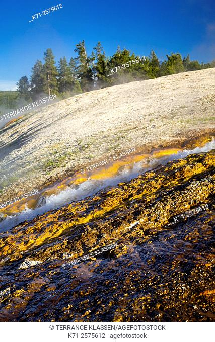 Colorful pools and hotsprings in the Midway Geyser Basin in Yellowstone National Park, Wyoming, USA