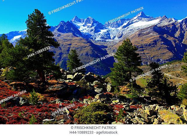 Alps, Alpine flora, Alpine panorama, view, Grünsee, view, mountains, mountain panorama, mountain lake, peak, cliff, rock, flora, mountains, summit, peak