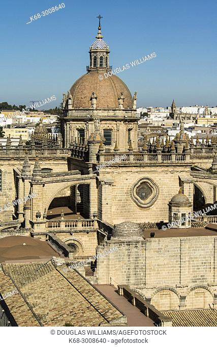The dome of the cathedral seen from the Alcazar in Jerez de la Frontera, Cadiz province, Andalucia, Spain