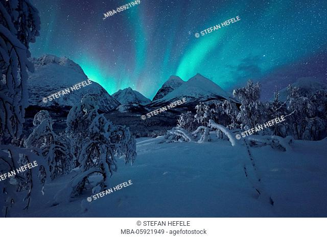 Polar lights on the Lyngen Alps, Norway