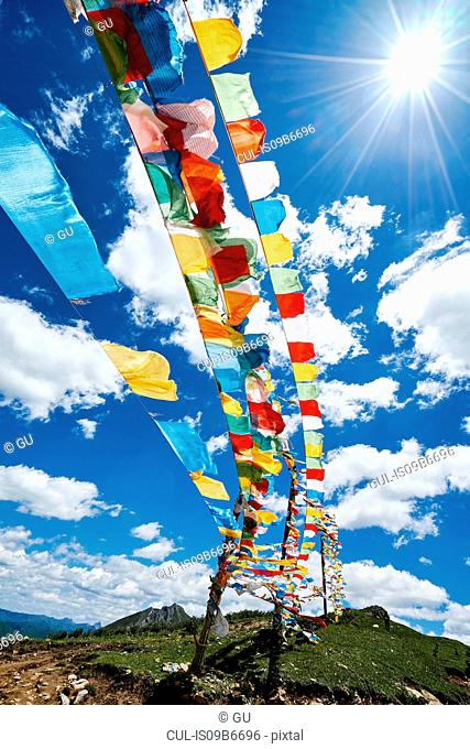 Rows of colourful prayer flags against blue sky, Zhagana, Gansu, China