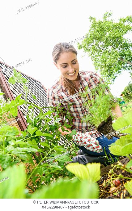 Young woman at garden work, Austria, Lower Austria