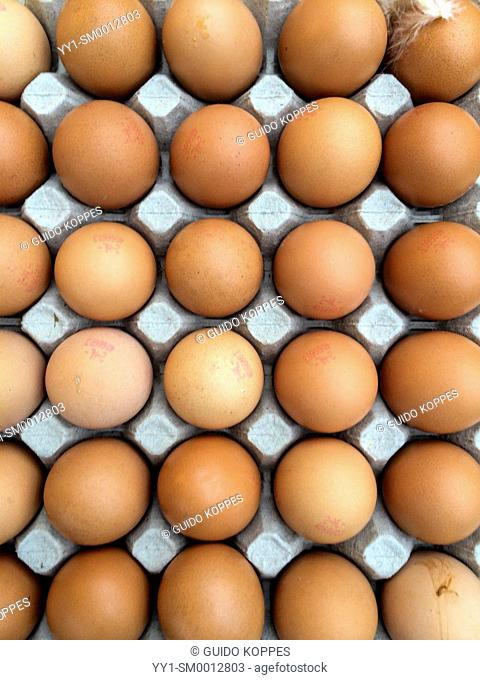 Tilburg, Netherlands. Crate filled with eggs in a market stall of a greengrocer at the local Wednesday market