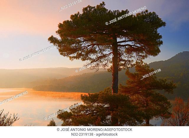 Embalse de la Toba, La Toba Reservoir at Dawn, Serrania de Cuenca Natural Park, Cuenca province, Castilla-La Mancha, Spain
