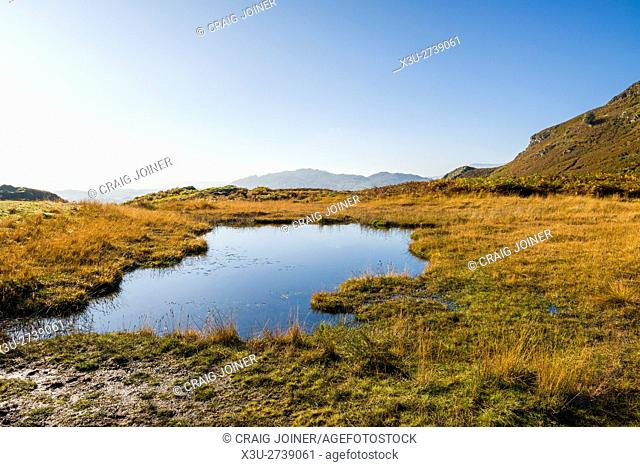 A small pond on Loughrigg Fell near Ambleside in the Lake District National Park. Cumbria. England
