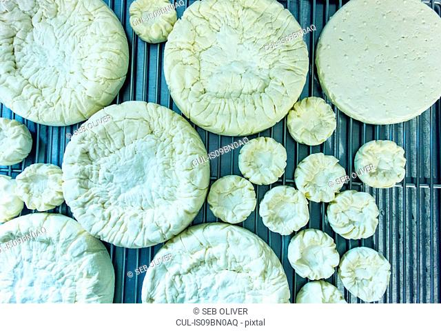 Circles of fresh cheese on wire tray, overhead view