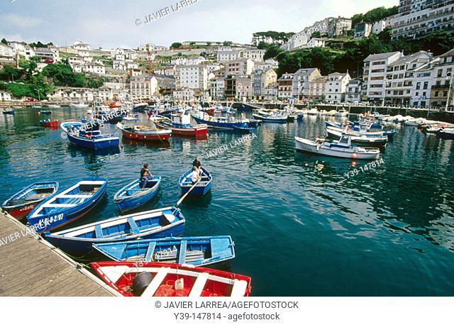 Harbour. Luarca. Asturias. Spain