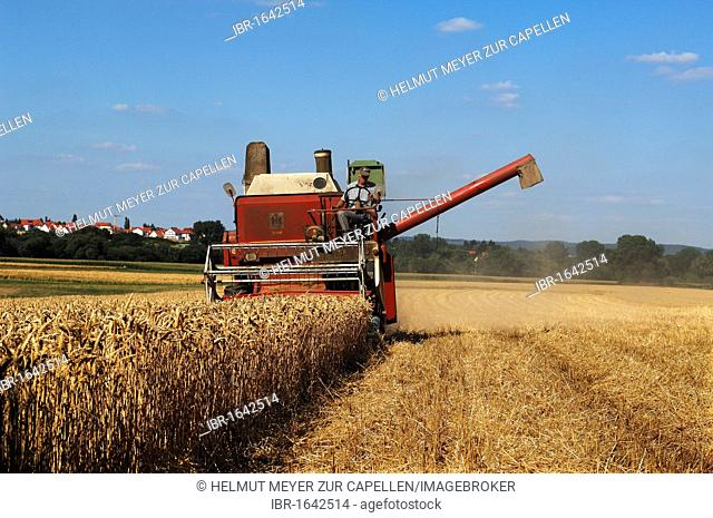 Old combine harvester threshing a wheat field, Theres, Lower Franconia, Bavaria, Germany, Europe