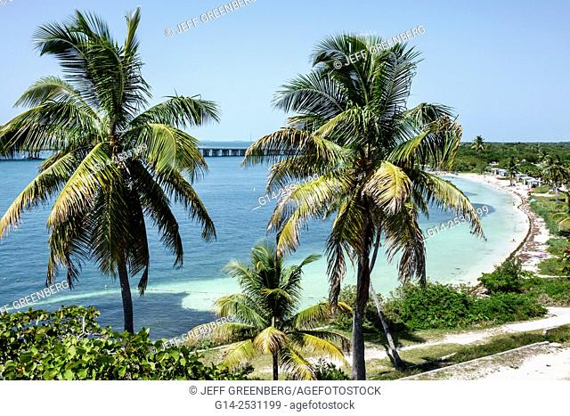 Florida, Keys, Route 1 Overseas Highway, Bahia Honda State Park, Key, Gulf of Mexico, palm trees
