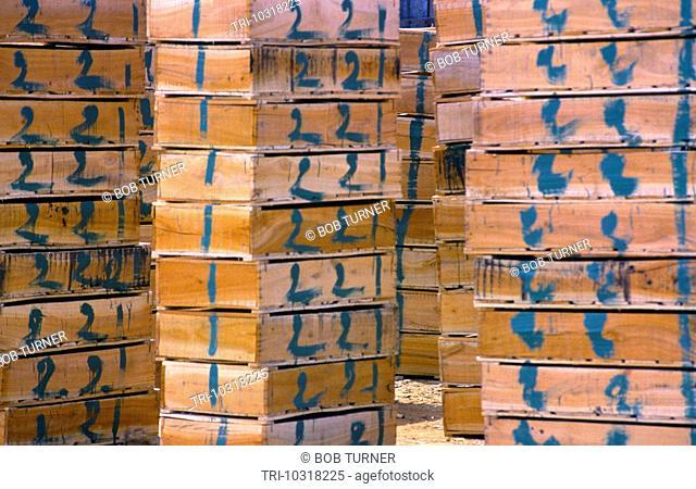 Rabat Morocco Planks Of Wood