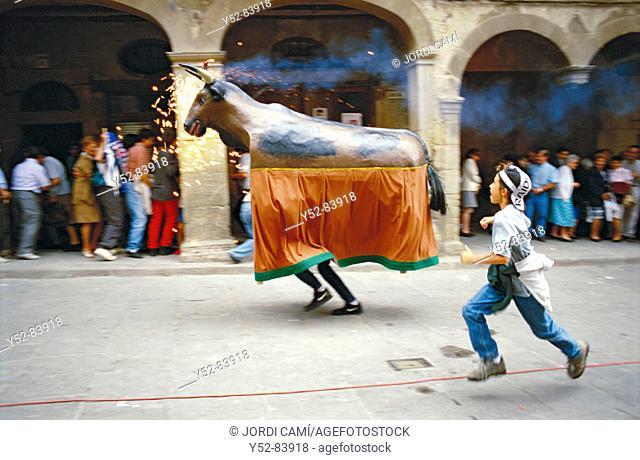 Bou (bull) at local festivities. Solsona, Solsonés, Lleida province, Catalonia, Spain