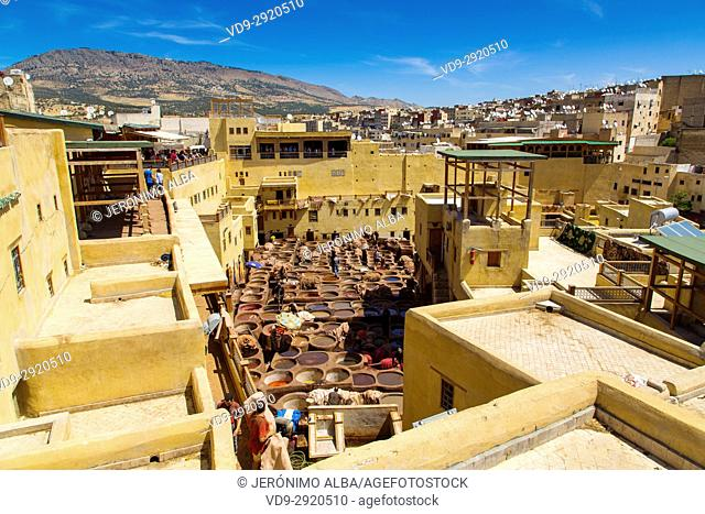 Chouwara traditional leather tannery. Souk Medina of Fez, Fes el Bali. Morocco, Maghreb North Africa