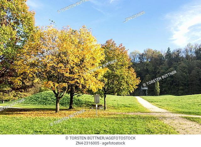 Autumn Trees and Vantage Point in Botanica Recreational Park. Bad Schallerbach. Austria