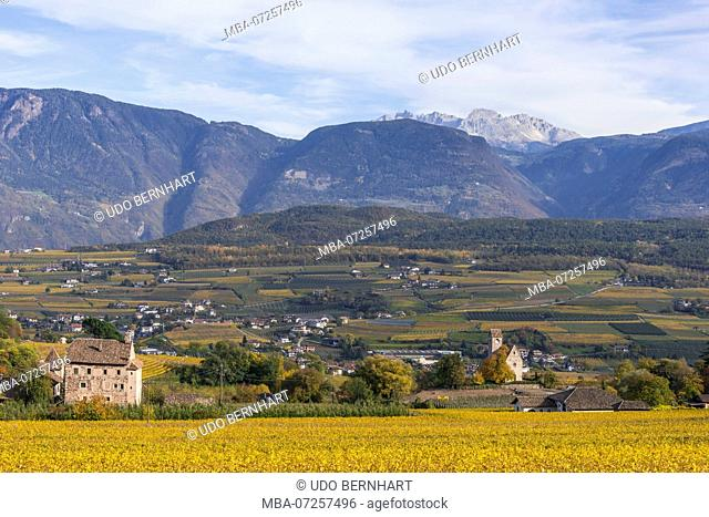 Italy, South Tyrol, Alto Adige, Überetsch, South Tyrol's South, Wine Route, Girlan, Ignaz Niedrist Winery, vineyard, view of St