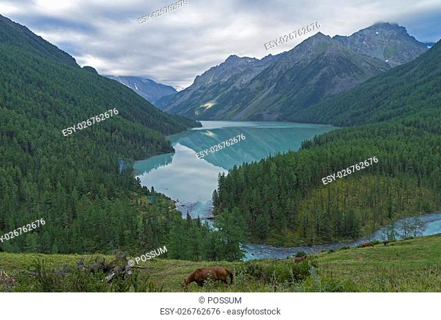 Reflection of mountains in the lake. Kucherla lake. Altai Mountains, Russia. Overcast summer morning