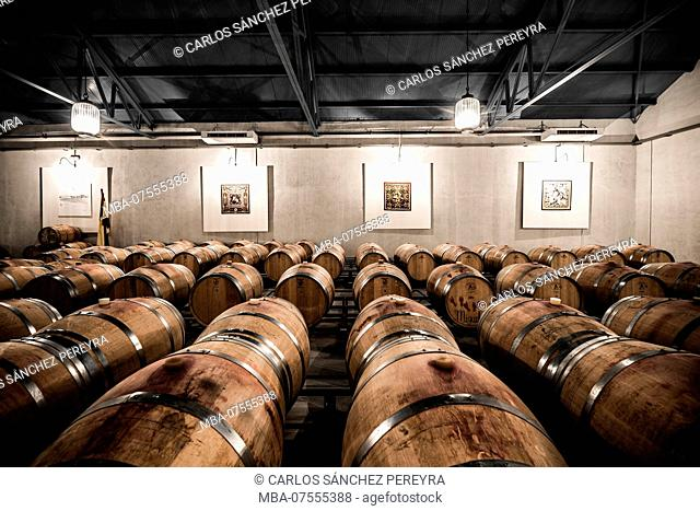 Interior of the barrels area of the Alonso del Yerro wineries of the Ribera del Duero appellation of origin in the province of Burgos in Spain Europe