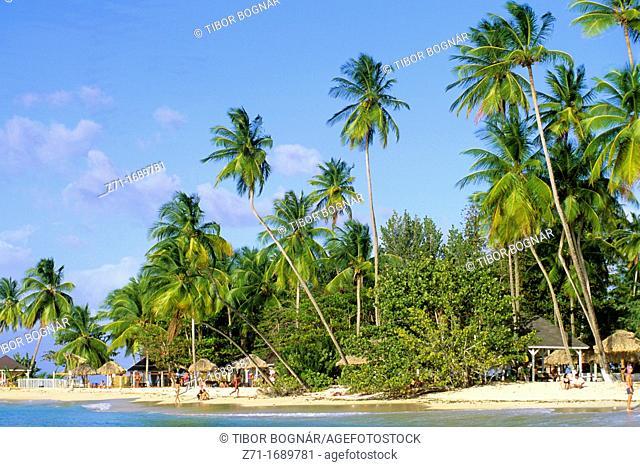 Caribbean, Tobago, Pigeon Point, beach
