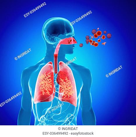 3d rendering illustration of pollen, virus or influenza infection