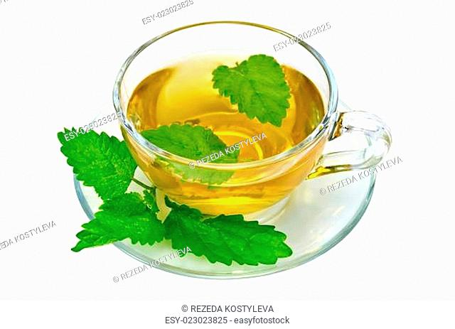 Herbal tea with nettles in a glass cup