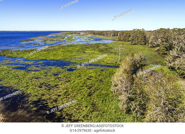Florida, Kenansville, Cypress Lake, water, shore, trees, aerial overhead bird's eye view above