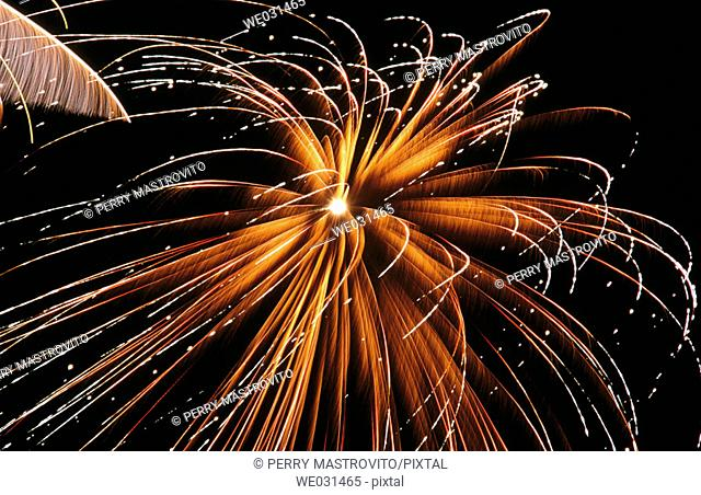 Gold and white fireworks in night sky