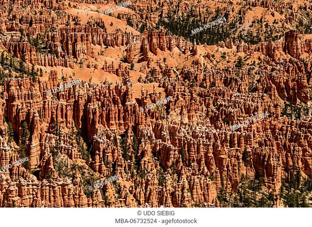 The USA, Utah, Garfield County, Bryce Canyon National Park, view from the Rim Trail close Bryce Point