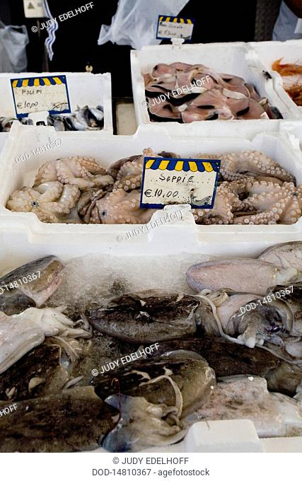Italy, Calabria, Ciro Marina, fresh fish and octopus on display in market