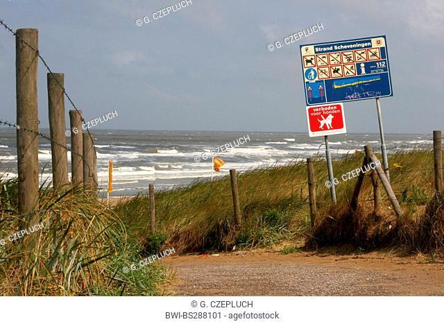 beach in Scheveningen, Netherlands, The Hague, Scheveningen