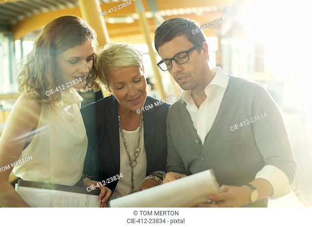 Business people reading paperwork in office