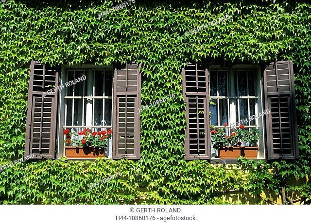 Slovenia, house, home, window, covered facade, Rad